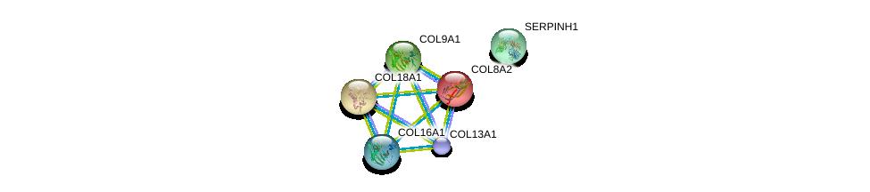 http://string-db.org/version_10/api/image/networkList?limit=0&targetmode=proteins&caller_identity=gene_cards&network_flavor=evidence&identifiers=9606.ENSP00000350894%0d%0a9606.ENSP00000362776%0d%0a9606.ENSP00000349790%0d%0a9606.ENSP00000347665%0d%0a9606.ENSP00000305913%0d%0a9606.ENSP00000381949%0d%0a