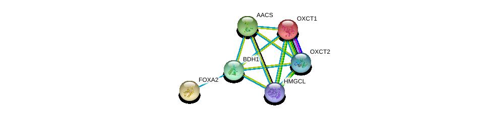 http://string-db.org/version_10/api/image/networkList?limit=0&targetmode=proteins&caller_identity=gene_cards&network_flavor=evidence&identifiers=9606.ENSP00000350914%0d%0a9606.ENSP00000324842%0d%0a9606.ENSP00000196371%0d%0a9606.ENSP00000315955%0d%0a9606.ENSP00000361914%0d%0a9606.ENSP00000363614%0d%0a