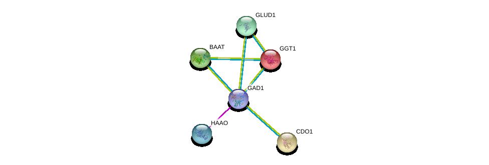 http://string-db.org/version_10/api/image/networkList?limit=0&targetmode=proteins&caller_identity=gene_cards&network_flavor=evidence&identifiers=9606.ENSP00000350928%0d%0a9606.ENSP00000294973%0d%0a9606.ENSP00000248923%0d%0a9606.ENSP00000250535%0d%0a9606.ENSP00000259407%0d%0a9606.ENSP00000277865%0d%0a