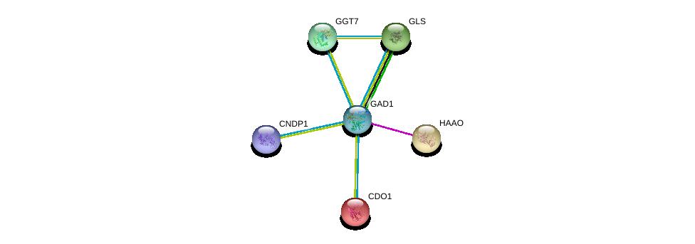 http://string-db.org/version_10/api/image/networkList?limit=0&targetmode=proteins&caller_identity=gene_cards&network_flavor=evidence&identifiers=9606.ENSP00000350928%0d%0a9606.ENSP00000294973%0d%0a9606.ENSP00000250535%0d%0a9606.ENSP00000338964%0d%0a9606.ENSP00000317379%0d%0a9606.ENSP00000351682%0d%0a