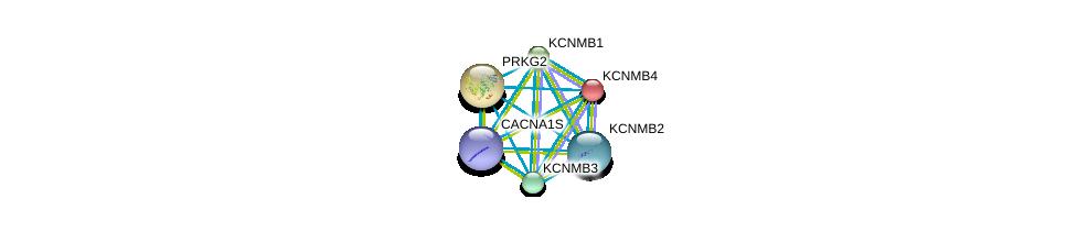 http://string-db.org/version_10/api/image/networkList?limit=0&targetmode=proteins&caller_identity=gene_cards&network_flavor=evidence&identifiers=9606.ENSP00000351068%0d%0a9606.ENSP00000264399%0d%0a9606.ENSP00000319370%0d%0a9606.ENSP00000274629%0d%0a9606.ENSP00000258111%0d%0a9606.ENSP00000355192%0d%0a