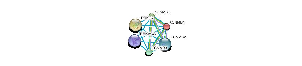 http://string-db.org/version_10/api/image/networkList?limit=0&targetmode=proteins&caller_identity=gene_cards&network_flavor=evidence&identifiers=9606.ENSP00000351068%0d%0a9606.ENSP00000319370%0d%0a9606.ENSP00000274629%0d%0a9606.ENSP00000264399%0d%0a9606.ENSP00000258111%0d%0a9606.ENSP00000366488%0d%0a
