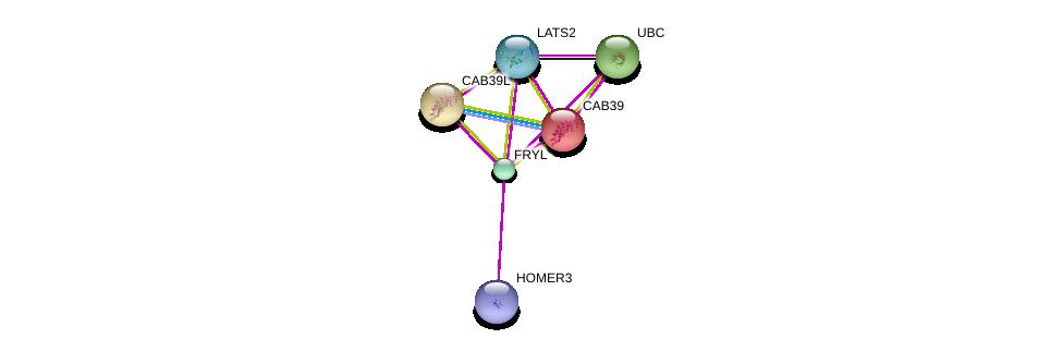http://string-db.org/version_10/api/image/networkList?limit=0&targetmode=proteins&caller_identity=gene_cards&network_flavor=evidence&identifiers=9606.ENSP00000351113%0d%0a9606.ENSP00000344818%0d%0a9606.ENSP00000376162%0d%0a9606.ENSP00000258418%0d%0a9606.ENSP00000261669%0d%0a9606.ENSP00000372035%0d%0a