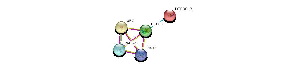 http://string-db.org/version_10/api/image/networkList?limit=0&targetmode=proteins&caller_identity=gene_cards&network_flavor=evidence&identifiers=9606.ENSP00000351132%0d%0a9606.ENSP00000344818%0d%0a9606.ENSP00000355865%0d%0a9606.ENSP00000364204%0d%0a9606.ENSP00000364204%0d%0a9606.ENSP00000265036%0d%0a