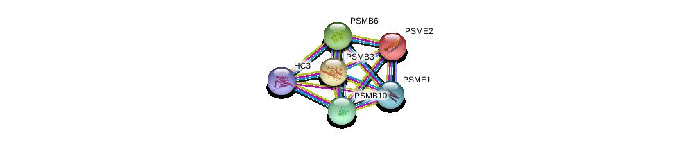 http://string-db.org/version_10/api/image/networkList?limit=0&targetmode=proteins&caller_identity=gene_cards&network_flavor=evidence&identifiers=9606.ENSP00000351314%0d%0a9606.ENSP00000216802%0d%0a9606.ENSP00000270586%0d%0a9606.ENSP00000225426%0d%0a9606.ENSP00000372155%0d%0a9606.ENSP00000455744%0d%0a