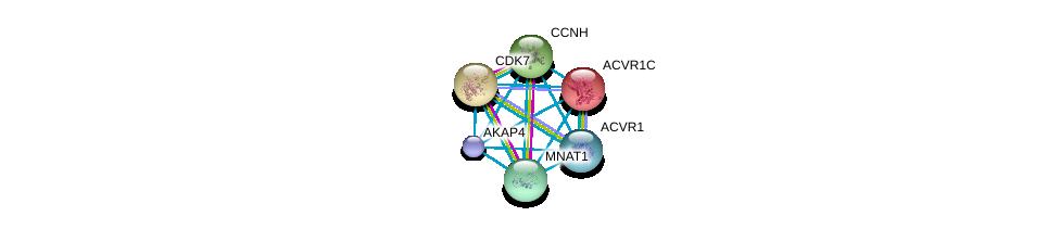 http://string-db.org/version_10/api/image/networkList?limit=0&targetmode=proteins&caller_identity=gene_cards&network_flavor=evidence&identifiers=9606.ENSP00000351327%0d%0a9606.ENSP00000263640%0d%0a9606.ENSP00000243349%0d%0a9606.ENSP00000256443%0d%0a9606.ENSP00000256897%0d%0a9606.ENSP00000261245%0d%0a