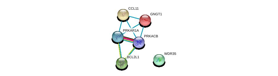 http://string-db.org/version_10/api/image/networkList?limit=0&targetmode=proteins&caller_identity=gene_cards&network_flavor=evidence&identifiers=9606.ENSP00000351410%0d%0a9606.ENSP00000359719%0d%0a9606.ENSP00000302564%0d%0a9606.ENSP00000314444%0d%0a9606.ENSP00000248572%0d%0a9606.ENSP00000302234%0d%0a