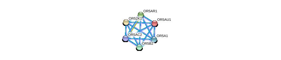 http://string-db.org/version_10/api/image/networkList?limit=0&targetmode=proteins&caller_identity=gene_cards&network_flavor=evidence&identifiers=9606.ENSP00000351466%0d%0a9606.ENSP00000302057%0d%0a9606.ENSP00000302422%0d%0a9606.ENSP00000302639%0d%0a9606.ENSP00000303076%0d%0a9606.ENSP00000303096%0d%0a