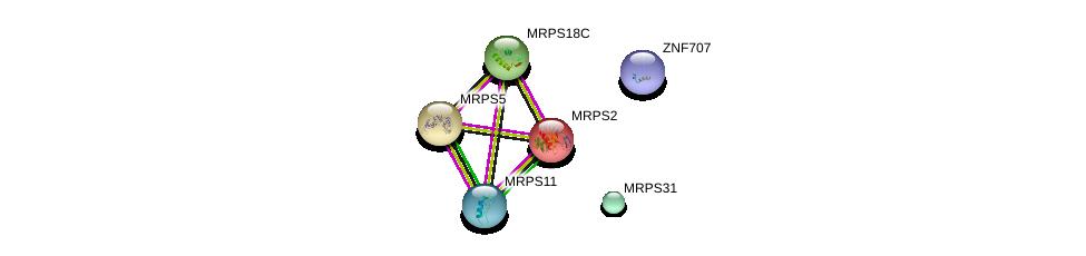 http://string-db.org/version_10/api/image/networkList?limit=0&targetmode=proteins&caller_identity=gene_cards&network_flavor=evidence&identifiers=9606.ENSP00000351482%0d%0a9606.ENSP00000315397%0d%0a9606.ENSP00000272418%0d%0a9606.ENSP00000295491%0d%0a9606.ENSP00000241600%0d%0a9606.ENSP00000317376%0d%0a