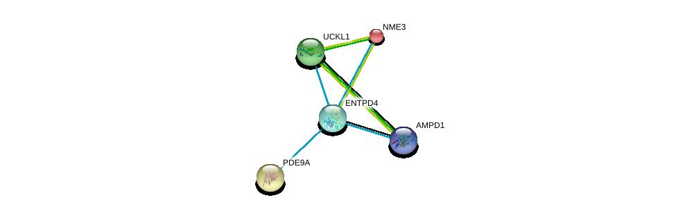 http://string-db.org/version_10/api/image/networkList?limit=0&targetmode=proteins&caller_identity=gene_cards&network_flavor=evidence&identifiers=9606.ENSP00000351520%0d%0a9606.ENSP00000430075%0d%0a9606.ENSP00000291539%0d%0a9606.ENSP00000346155%0d%0a9606.ENSP00000346155%0d%0a9606.ENSP00000219302%0d%0a