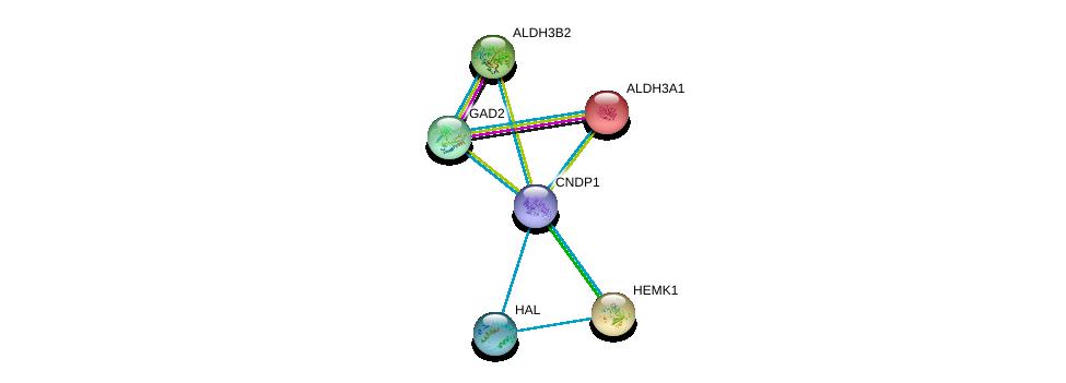 http://string-db.org/version_10/api/image/networkList?limit=0&targetmode=proteins&caller_identity=gene_cards&network_flavor=evidence&identifiers=9606.ENSP00000351682%0d%0a9606.ENSP00000225740%0d%0a9606.ENSP00000232854%0d%0a9606.ENSP00000255084%0d%0a9606.ENSP00000259271%0d%0a9606.ENSP00000261208%0d%0a