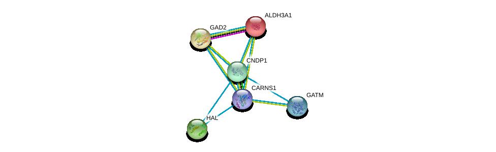 http://string-db.org/version_10/api/image/networkList?limit=0&targetmode=proteins&caller_identity=gene_cards&network_flavor=evidence&identifiers=9606.ENSP00000351682%0d%0a9606.ENSP00000261208%0d%0a9606.ENSP00000259271%0d%0a9606.ENSP00000379895%0d%0a9606.ENSP00000225740%0d%0a9606.ENSP00000389009%0d%0a