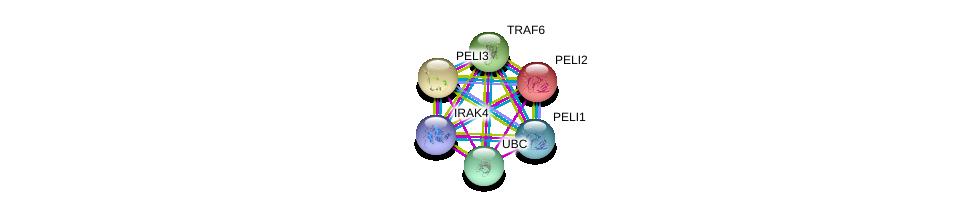 http://string-db.org/version_10/api/image/networkList?limit=0&targetmode=proteins&caller_identity=gene_cards&network_flavor=evidence&identifiers=9606.ENSP00000351789%0d%0a9606.ENSP00000390651%0d%0a9606.ENSP00000344818%0d%0a9606.ENSP00000337853%0d%0a9606.ENSP00000322532%0d%0a9606.ENSP00000267460%0d%0a