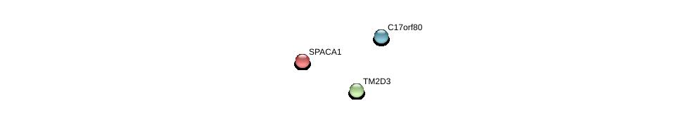 http://string-db.org/version_10/api/image/networkList?limit=0&targetmode=proteins&caller_identity=gene_cards&network_flavor=evidence&identifiers=9606.ENSP00000351937%0d%0a9606.ENSP00000330433%0d%0a9606.ENSP00000237201%0d%0a