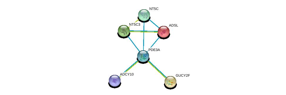 http://string-db.org/version_10/api/image/networkList?limit=0&targetmode=proteins&caller_identity=gene_cards&network_flavor=evidence&identifiers=9606.ENSP00000351957%0d%0a9606.ENSP00000356825%0d%0a9606.ENSP00000216194%0d%0a9606.ENSP00000218006%0d%0a9606.ENSP00000242210%0d%0a9606.ENSP00000245552%0d%0a