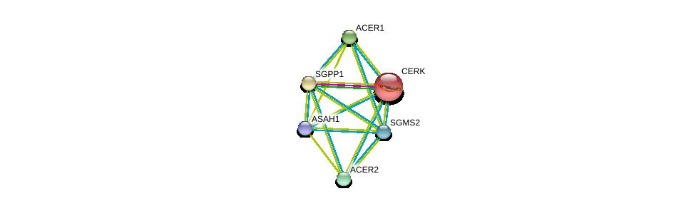 http://string-db.org/version_10/api/image/networkList?limit=0&targetmode=proteins&caller_identity=gene_cards&network_flavor=evidence&identifiers=9606.ENSP00000351981%0d%0a9606.ENSP00000301452%0d%0a9606.ENSP00000342609%0d%0a9606.ENSP00000371152%0d%0a9606.ENSP00000216264%0d%0a9606.ENSP00000247225%0d%0a