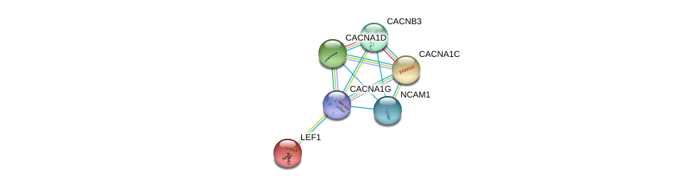 http://string-db.org/version_10/api/image/networkList?limit=0&targetmode=proteins&caller_identity=gene_cards&network_flavor=evidence&identifiers=9606.ENSP00000352011%0d%0a9606.ENSP00000265165%0d%0a9606.ENSP00000266376%0d%0a9606.ENSP00000288139%0d%0a9606.ENSP00000301050%0d%0a9606.ENSP00000318472%0d%0a
