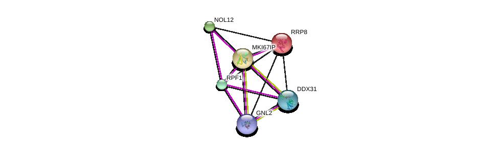 http://string-db.org/version_10/api/image/networkList?limit=0&targetmode=proteins&caller_identity=gene_cards&network_flavor=evidence&identifiers=9606.ENSP00000352021%0d%0a9606.ENSP00000285814%0d%0a9606.ENSP00000361232%0d%0a9606.ENSP00000359688%0d%0a9606.ENSP00000362153%0d%0a9606.ENSP00000254605%0d%0a