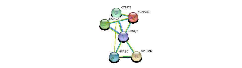 http://string-db.org/version_10/api/image/networkList?limit=0&targetmode=proteins&caller_identity=gene_cards&network_flavor=evidence&identifiers=9606.ENSP00000352035%0d%0a9606.ENSP00000302719%0d%0a9606.ENSP00000312129%0d%0a9606.ENSP00000311489%0d%0a9606.ENSP00000333496%0d%0a9606.ENSP00000344786%0d%0a