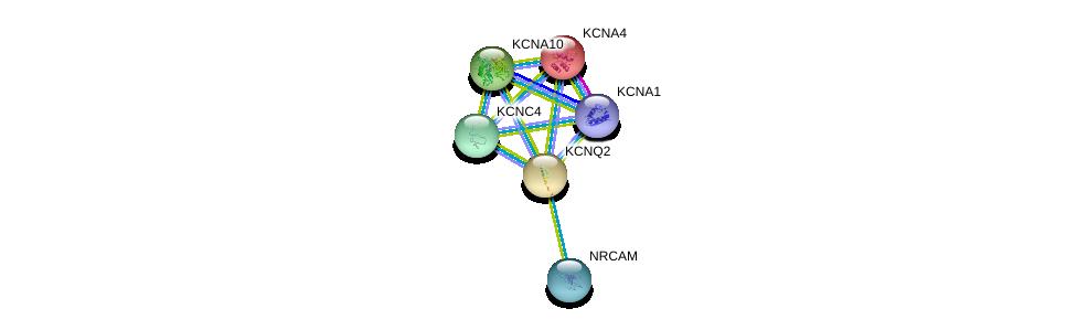 http://string-db.org/version_10/api/image/networkList?limit=0&targetmode=proteins&caller_identity=gene_cards&network_flavor=evidence&identifiers=9606.ENSP00000352035%0d%0a9606.ENSP00000368314%0d%0a9606.ENSP00000358802%0d%0a9606.ENSP00000371985%0d%0a9606.ENSP00000328511%0d%0a9606.ENSP00000358786%0d%0a