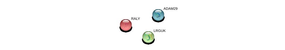 http://string-db.org/version_10/api/image/networkList?limit=0&targetmode=proteins&caller_identity=gene_cards&network_flavor=evidence&identifiers=9606.ENSP00000352177%0d%0a9606.ENSP00000285928%0d%0a9606.ENSP00000246194%0d%0a