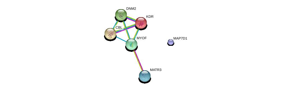 http://string-db.org/version_10/api/image/networkList?limit=0&targetmode=proteins&caller_identity=gene_cards&network_flavor=evidence&identifiers=9606.ENSP00000352208%0d%0a9606.ENSP00000347890%0d%0a9606.ENSP00000264033%0d%0a9606.ENSP00000263923%0d%0a9606.ENSP00000362244%0d%0a9606.ENSP00000354346%0d%0a