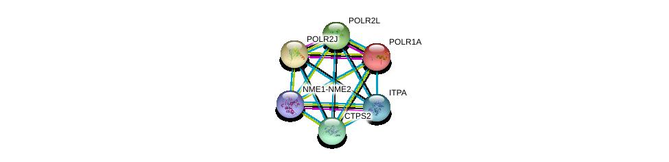 http://string-db.org/version_10/api/image/networkList?limit=0&targetmode=proteins&caller_identity=gene_cards&network_flavor=evidence&identifiers=9606.ENSP00000352222%0d%0a9606.ENSP00000263857%0d%0a9606.ENSP00000324124%0d%0a9606.ENSP00000376886%0d%0a9606.ENSP00000369456%0d%0a9606.ENSP00000292614%0d%0a