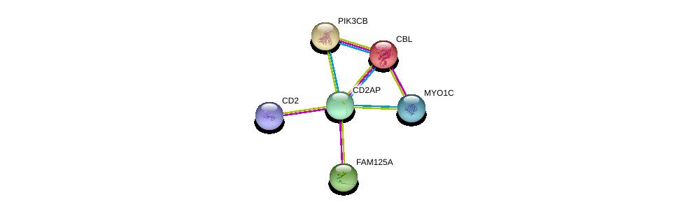 http://string-db.org/version_10/api/image/networkList?limit=0&targetmode=proteins&caller_identity=gene_cards&network_flavor=evidence&identifiers=9606.ENSP00000352264%0d%0a9606.ENSP00000264033%0d%0a9606.ENSP00000358490%0d%0a9606.ENSP00000324810%0d%0a9606.ENSP00000352834%0d%0a9606.ENSP00000289153%0d%0a