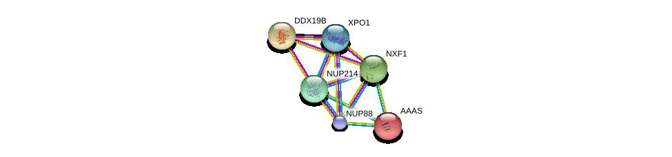 http://string-db.org/version_10/api/image/networkList?limit=0&targetmode=proteins&caller_identity=gene_cards&network_flavor=evidence&identifiers=9606.ENSP00000352400%0d%0a9606.ENSP00000458954%0d%0a9606.ENSP00000294172%0d%0a9606.ENSP00000288071%0d%0a9606.ENSP00000384863%0d%0a9606.ENSP00000209873%0d%0a