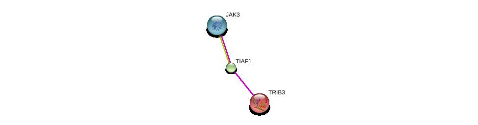 http://string-db.org/version_10/api/image/networkList?limit=0&targetmode=proteins&caller_identity=gene_cards&network_flavor=evidence&identifiers=9606.ENSP00000352424%0d%0a9606.ENSP00000391676%0d%0a9606.ENSP00000217233%0d%0a