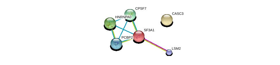 http://string-db.org/version_10/api/image/networkList?limit=0&targetmode=proteins&caller_identity=gene_cards&network_flavor=evidence&identifiers=9606.ENSP00000352438%0d%0a9606.ENSP00000316042%0d%0a9606.ENSP00000345412%0d%0a9606.ENSP00000215793%0d%0a9606.ENSP00000364813%0d%0a9606.ENSP00000264645%0d%0a