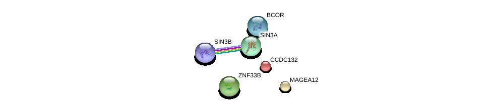 http://string-db.org/version_10/api/image/networkList?limit=0&targetmode=proteins&caller_identity=gene_cards&network_flavor=evidence&identifiers=9606.ENSP00000352444%0d%0a9606.ENSP00000307666%0d%0a9606.ENSP00000353622%0d%0a9606.ENSP00000369131%0d%0a9606.ENSP00000350592%0d%0a9606.ENSP00000367705%0d%0a