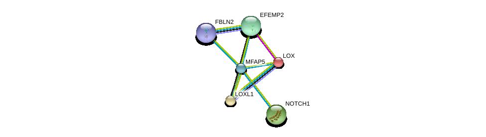 http://string-db.org/version_10/api/image/networkList?limit=0&targetmode=proteins&caller_identity=gene_cards&network_flavor=evidence&identifiers=9606.ENSP00000352455%0d%0a9606.ENSP00000277541%0d%0a9606.ENSP00000309953%0d%0a9606.ENSP00000261921%0d%0a9606.ENSP00000231004%0d%0a9606.ENSP00000384169%0d%0a