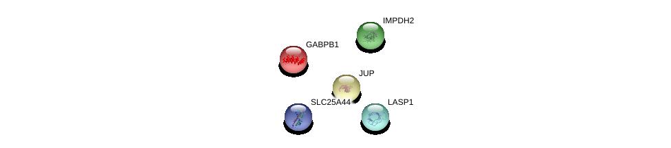 http://string-db.org/version_10/api/image/networkList?limit=0&targetmode=proteins&caller_identity=gene_cards&network_flavor=evidence&identifiers=9606.ENSP00000352497%0d%0a9606.ENSP00000311113%0d%0a9606.ENSP00000321584%0d%0a9606.ENSP00000325240%0d%0a9606.ENSP00000220429%0d%0a9606.ENSP00000220429%0d%0a
