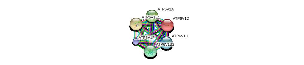 http://string-db.org/version_10/api/image/networkList?limit=0&targetmode=proteins&caller_identity=gene_cards&network_flavor=evidence&identifiers=9606.ENSP00000352522%0d%0a9606.ENSP00000216442%0d%0a9606.ENSP00000417378%0d%0a9606.ENSP00000276390%0d%0a9606.ENSP00000253413%0d%0a9606.ENSP00000273398%0d%0a