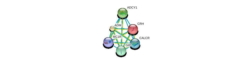 http://string-db.org/version_10/api/image/networkList?limit=0&targetmode=proteins&caller_identity=gene_cards&network_flavor=evidence&identifiers=9606.ENSP00000352561%0d%0a9606.ENSP00000451605%0d%0a9606.ENSP00000350005%0d%0a9606.ENSP00000297323%0d%0a9606.ENSP00000276571%0d%0a9606.ENSP00000278175%0d%0a