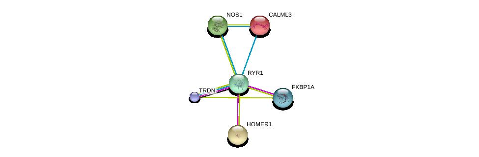 http://string-db.org/version_10/api/image/networkList?limit=0&targetmode=proteins&caller_identity=gene_cards&network_flavor=evidence&identifiers=9606.ENSP00000352608%0d%0a9606.ENSP00000381240%0d%0a9606.ENSP00000371138%0d%0a9606.ENSP00000334382%0d%0a9606.ENSP00000315299%0d%0a9606.ENSP00000337459%0d%0a