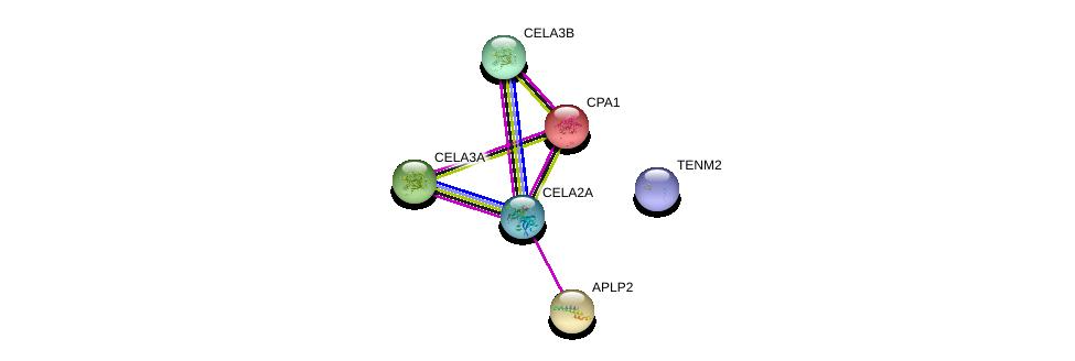 http://string-db.org/version_10/api/image/networkList?limit=0&targetmode=proteins&caller_identity=gene_cards&network_flavor=evidence&identifiers=9606.ENSP00000352639%0d%0a9606.ENSP00000011292%0d%0a9606.ENSP00000429430%0d%0a9606.ENSP00000290122%0d%0a9606.ENSP00000338369%0d%0a9606.ENSP00000263574%0d%0a