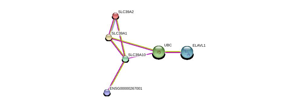 http://string-db.org/version_10/api/image/networkList?limit=0&targetmode=proteins&caller_identity=gene_cards&network_flavor=evidence&identifiers=9606.ENSP00000352655%0d%0a9606.ENSP00000344818%0d%0a9606.ENSP00000385269%0d%0a9606.ENSP00000467958%0d%0a9606.ENSP00000309710%0d%0a9606.ENSP00000298681%0d%0a