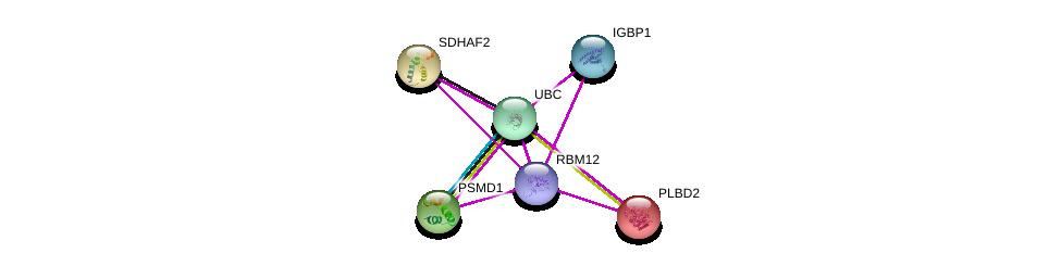http://string-db.org/version_10/api/image/networkList?limit=0&targetmode=proteins&caller_identity=gene_cards&network_flavor=evidence&identifiers=9606.ENSP00000352668%0d%0a9606.ENSP00000344818%0d%0a9606.ENSP00000348784%0d%0a9606.ENSP00000309474%0d%0a9606.ENSP00000301761%0d%0a9606.ENSP00000280800%0d%0a