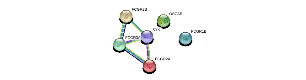 http://string-db.org/version_10/api/image/networkList?limit=0&targetmode=proteins&caller_identity=gene_cards&network_flavor=evidence&identifiers=9606.ENSP00000352671%0d%0a9606.ENSP00000271450%0d%0a9606.ENSP00000356946%0d%0a9606.ENSP00000358391%0d%0a9606.ENSP00000351497%0d%0a9606.ENSP00000364898%0d%0a