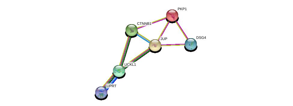 http://string-db.org/version_10/api/image/networkList?limit=0&targetmode=proteins&caller_identity=gene_cards&network_flavor=evidence&identifiers=9606.ENSP00000352785%0d%0a9606.ENSP00000362481%0d%0a9606.ENSP00000346155%0d%0a9606.ENSP00000344456%0d%0a9606.ENSP00000311113%0d%0a9606.ENSP00000263946%0d%0a