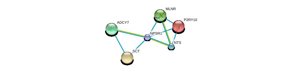 http://string-db.org/version_10/api/image/networkList?limit=0&targetmode=proteins&caller_identity=gene_cards&network_flavor=evidence&identifiers=9606.ENSP00000352839%0d%0a9606.ENSP00000218721%0d%0a9606.ENSP00000254235%0d%0a9606.ENSP00000176195%0d%0a9606.ENSP00000171757%0d%0a9606.ENSP00000256010%0d%0a