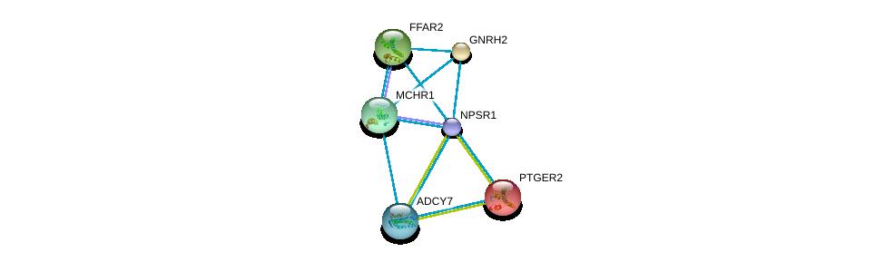 http://string-db.org/version_10/api/image/networkList?limit=0&targetmode=proteins&caller_identity=gene_cards&network_flavor=evidence&identifiers=9606.ENSP00000352839%0d%0a9606.ENSP00000249016%0d%0a9606.ENSP00000246549%0d%0a9606.ENSP00000254235%0d%0a9606.ENSP00000245983%0d%0a9606.ENSP00000245457%0d%0a