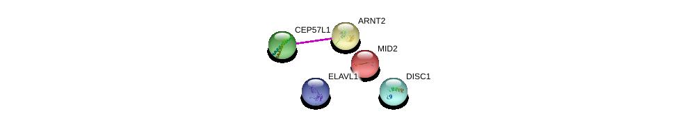 http://string-db.org/version_10/api/image/networkList?limit=0&targetmode=proteins&caller_identity=gene_cards&network_flavor=evidence&identifiers=9606.ENSP00000352841%0d%0a9606.ENSP00000307479%0d%0a9606.ENSP00000307479%0d%0a9606.ENSP00000262843%0d%0a9606.ENSP00000385269%0d%0a9606.ENSP00000355593%0d%0a