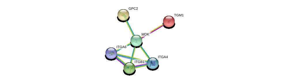 http://string-db.org/version_10/api/image/networkList?limit=0&targetmode=proteins&caller_identity=gene_cards&network_flavor=evidence&identifiers=9606.ENSP00000352852%0d%0a9606.ENSP00000292377%0d%0a9606.ENSP00000303351%0d%0a9606.ENSP00000380227%0d%0a9606.ENSP00000386896%0d%0a9606.ENSP00000206765%0d%0a