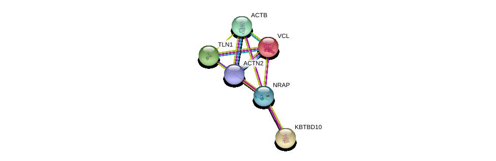 http://string-db.org/version_10/api/image/networkList?limit=0&targetmode=proteins&caller_identity=gene_cards&network_flavor=evidence&identifiers=9606.ENSP00000353078%0d%0a9606.ENSP00000284669%0d%0a9606.ENSP00000355537%0d%0a9606.ENSP00000349960%0d%0a9606.ENSP00000316029%0d%0a9606.ENSP00000211998%0d%0a