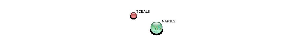 http://string-db.org/version_10/api/image/networkList?limit=0&targetmode=proteins&caller_identity=gene_cards&network_flavor=evidence&identifiers=9606.ENSP00000353093%0d%0a9606.ENSP00000362616%0d%0a