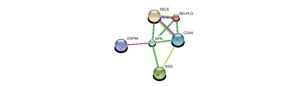 http://string-db.org/version_10/api/image/networkList?limit=0&targetmode=proteins&caller_identity=gene_cards&network_flavor=evidence&identifiers=9606.ENSP00000353238%0d%0a9606.ENSP00000407818%0d%0a9606.ENSP00000398632%0d%0a9606.ENSP00000333769%0d%0a9606.ENSP00000228463%0d%0a9606.ENSP00000331736%0d%0a