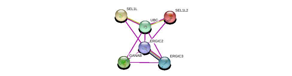 http://string-db.org/version_10/api/image/networkList?limit=0&targetmode=proteins&caller_identity=gene_cards&network_flavor=evidence&identifiers=9606.ENSP00000353270%0d%0a9606.ENSP00000349970%0d%0a9606.ENSP00000344818%0d%0a9606.ENSP00000284951%0d%0a9606.ENSP00000337053%0d%0a9606.ENSP00000340466%0d%0a